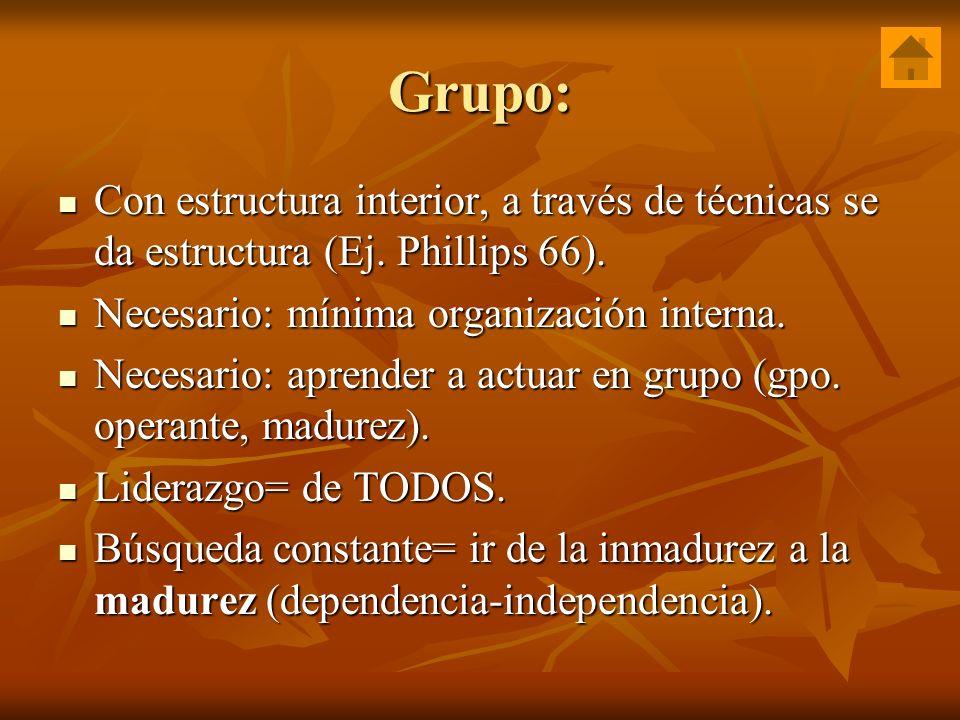 Grupo: Con estructura interior, a través de técnicas se da estructura (Ej. Phillips 66). Necesario: mínima organización interna.