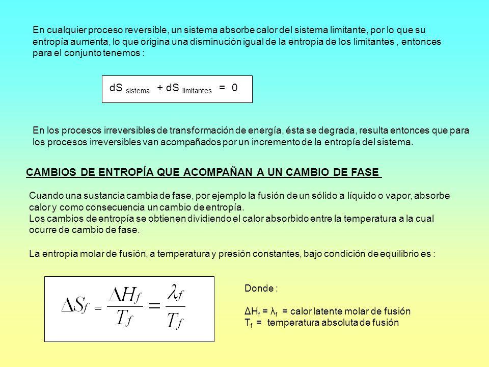 dS sistema + dS limitantes = 0