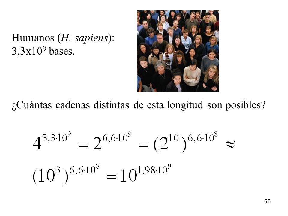 Humanos (H. sapiens): 3,3x109 bases. ¿Cuántas cadenas distintas de esta longitud son posibles