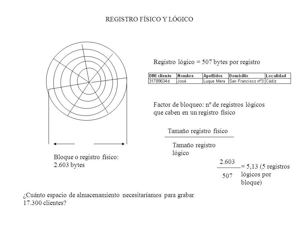 REGISTRO FÍSICO Y LÓGICO