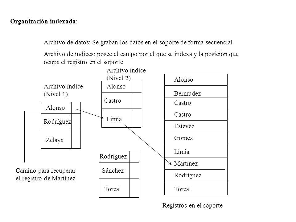 Organización indexada: