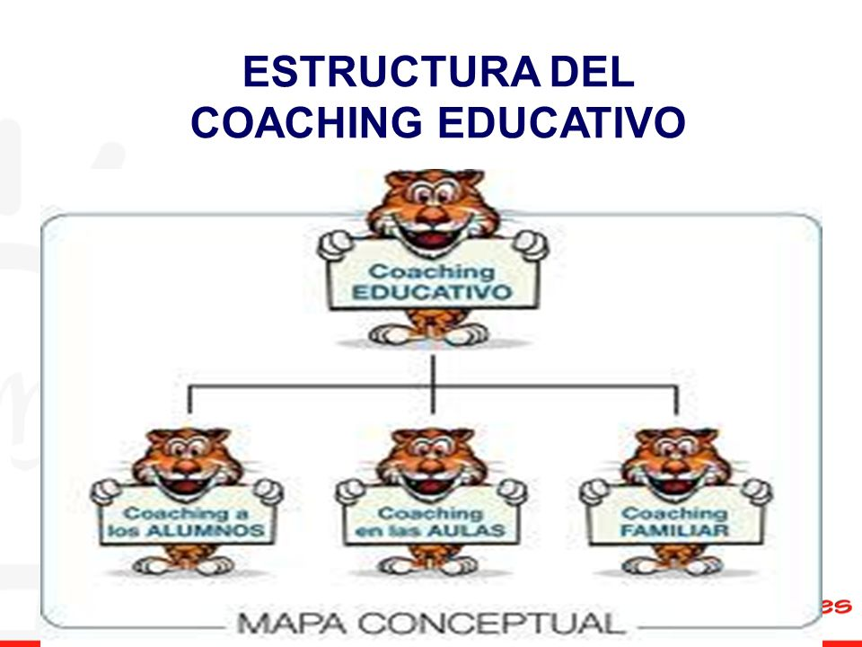 ESTRUCTURA DEL COACHING EDUCATIVO