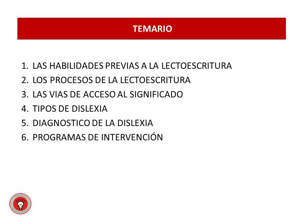 TEMARIO LAS HABILIDADES PREVIAS A LA LECTOESCRITURA. LOS PROCESOS DE LA LECTOESCRITURA. LAS VIAS DE ACCESO AL SIGNIFICADO.