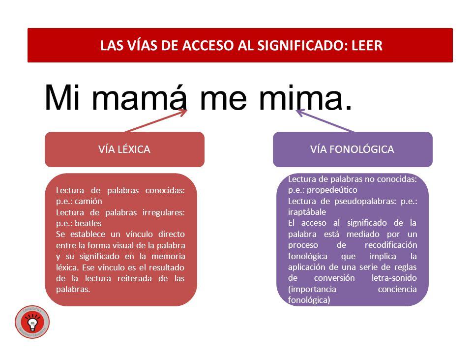 LAS VÍAS DE ACCESO AL SIGNIFICADO: LEER