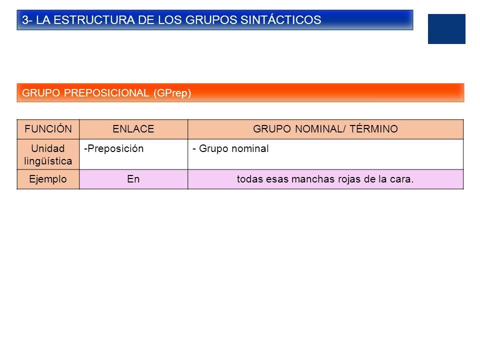 3- LA ESTRUCTURA DE LOS GRUPOS SINTÁCTICOS