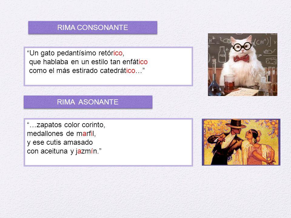 RIMA CONSONANTE Un gato pedantísimo retórico, que hablaba en un estilo tan enfático. como el más estirado catedrático…
