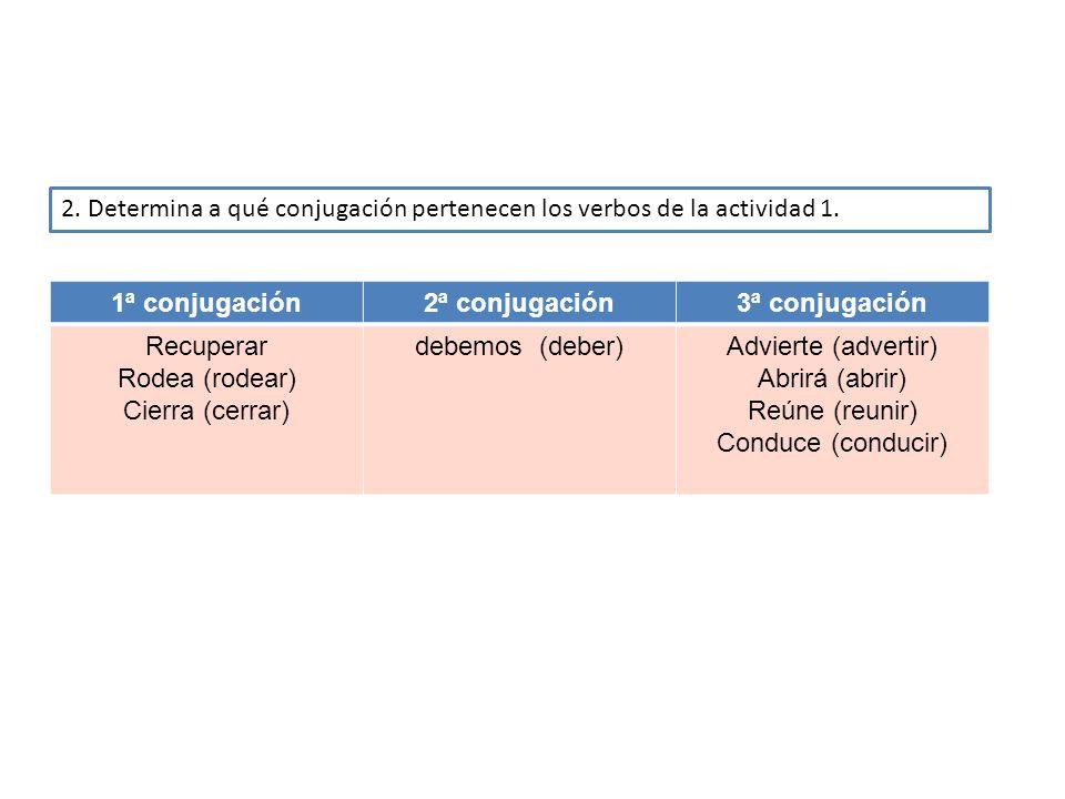 2. Determina a qué conjugación pertenecen los verbos de la actividad 1.