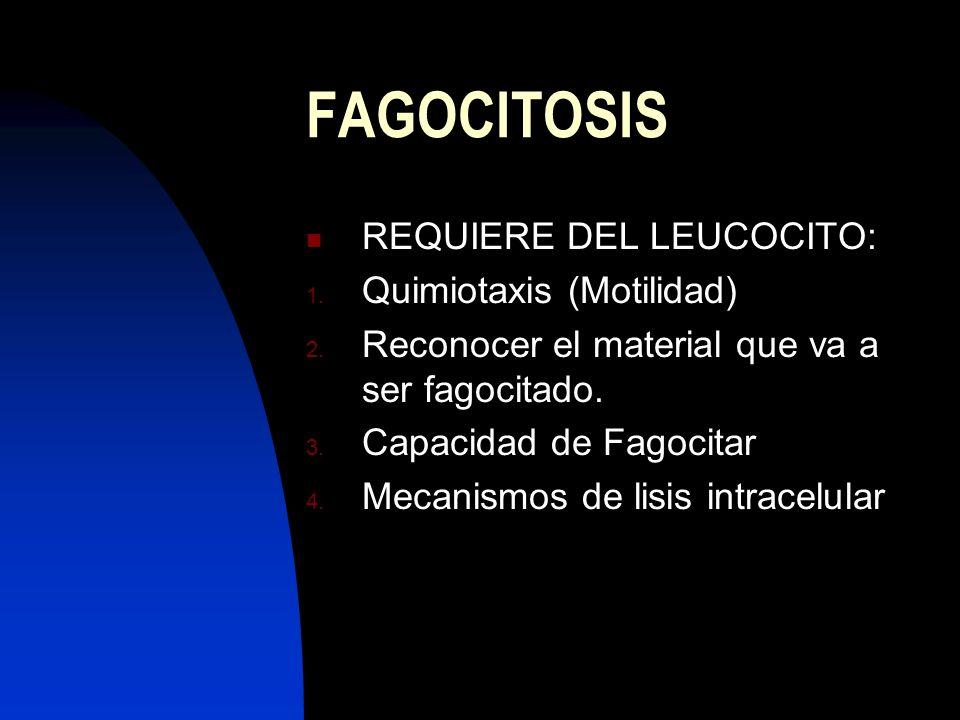 FAGOCITOSIS REQUIERE DEL LEUCOCITO: Quimiotaxis (Motilidad)