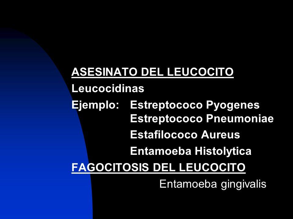 ASESINATO DEL LEUCOCITO