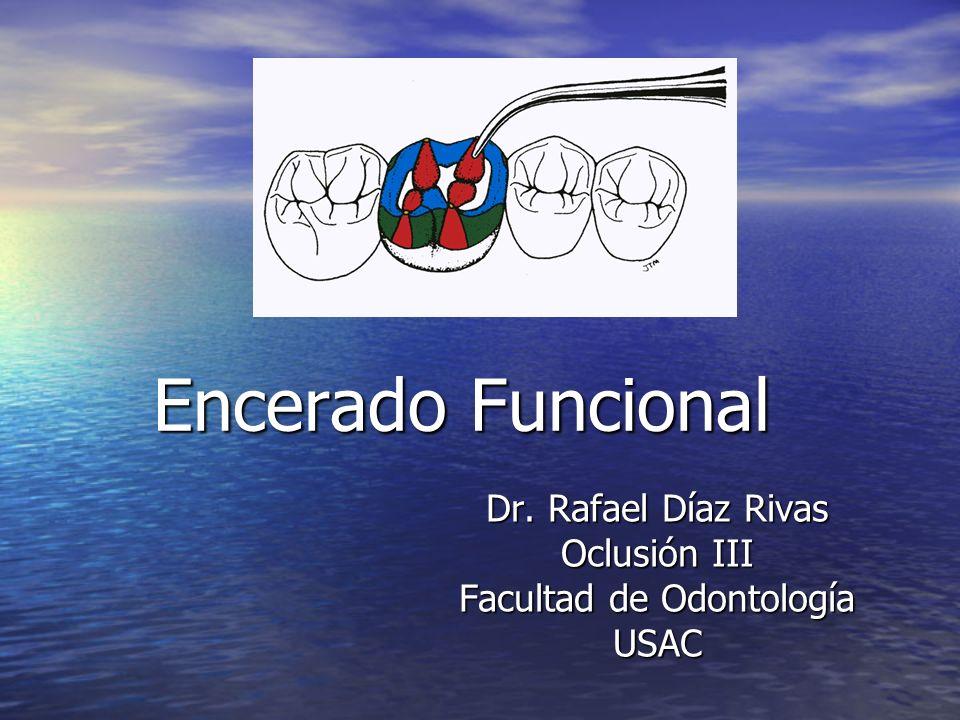 Dr. Rafael Díaz Rivas Oclusión III Facultad de Odontología USAC
