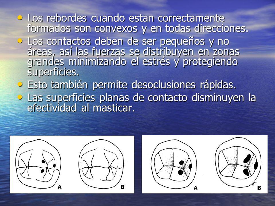 Los rebordes cuando estan correctamente formados son convexos y en todas direcciones.