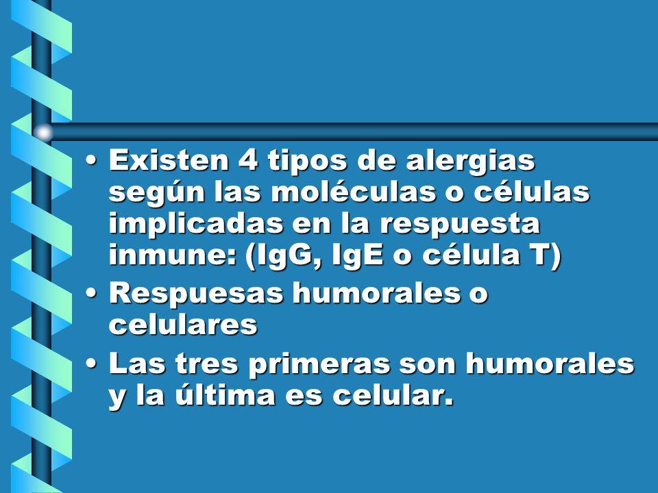 Existen 4 tipos de alergias según las moléculas o células implicadas en la respuesta inmune: (IgG, IgE o célula T)