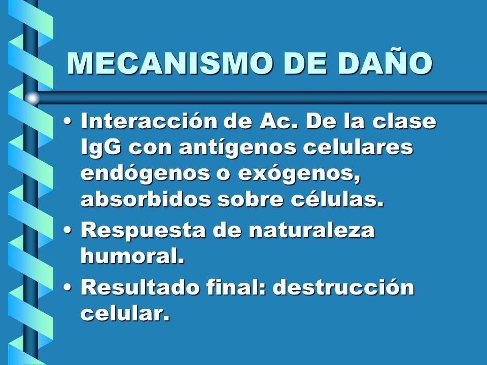 MECANISMO DE DAÑO Interacción de Ac. De la clase IgG con antígenos celulares endógenos o exógenos, absorbidos sobre células.
