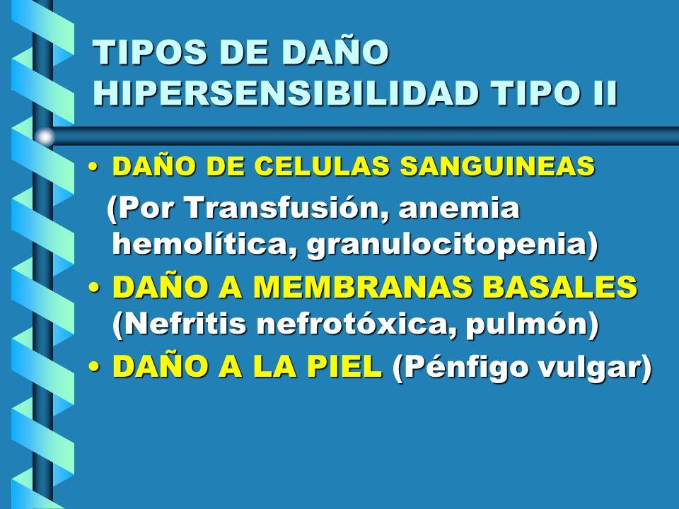 TIPOS DE DAÑO HIPERSENSIBILIDAD TIPO II