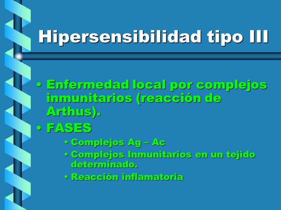 Hipersensibilidad tipo III