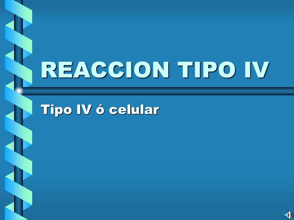 REACCION TIPO IV Tipo IV ó celular