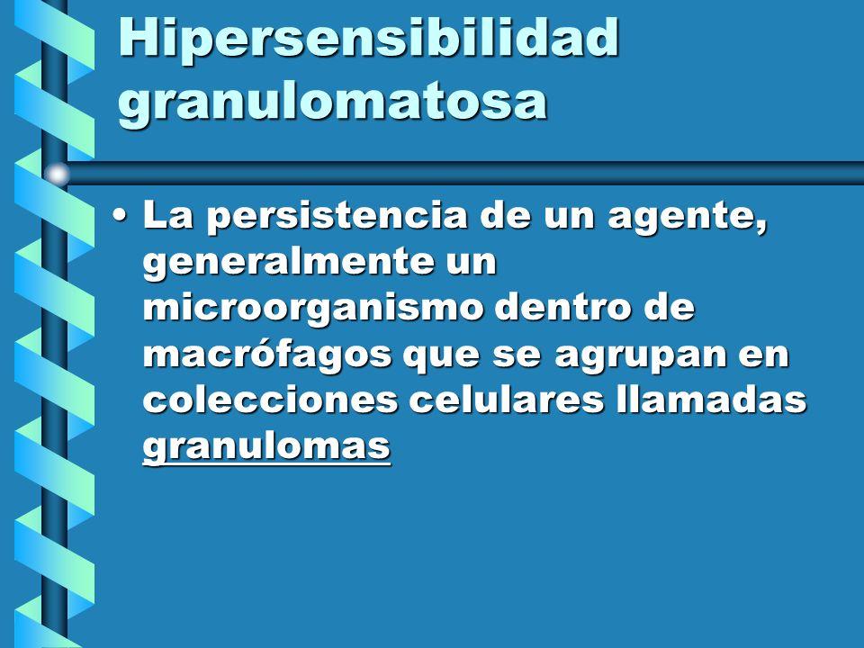 Hipersensibilidad granulomatosa