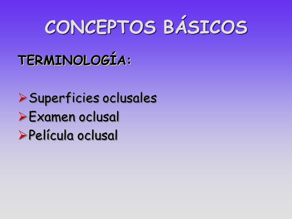 CONCEPTOS BÁSICOS TERMINOLOGÍA: Superficies oclusales Examen oclusal