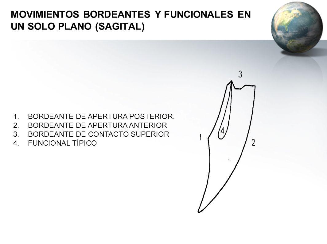 MOVIMIENTOS BORDEANTES Y FUNCIONALES EN UN SOLO PLANO (SAGITAL)