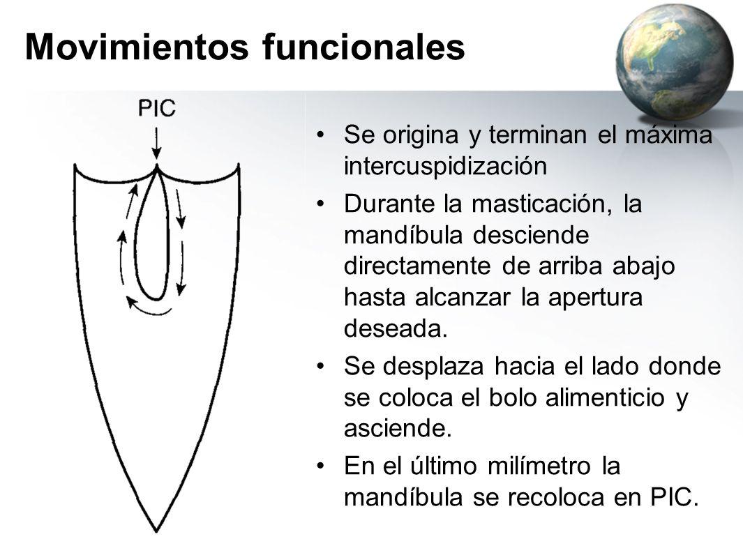 Movimientos funcionales