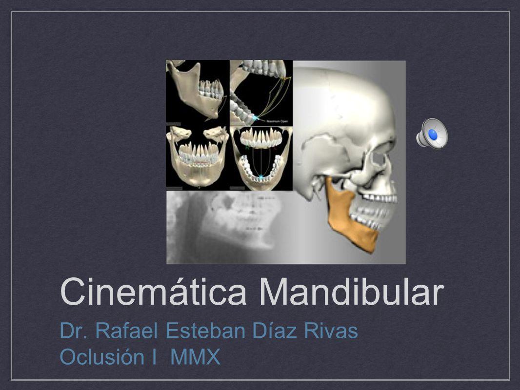 Cinemática Mandibular