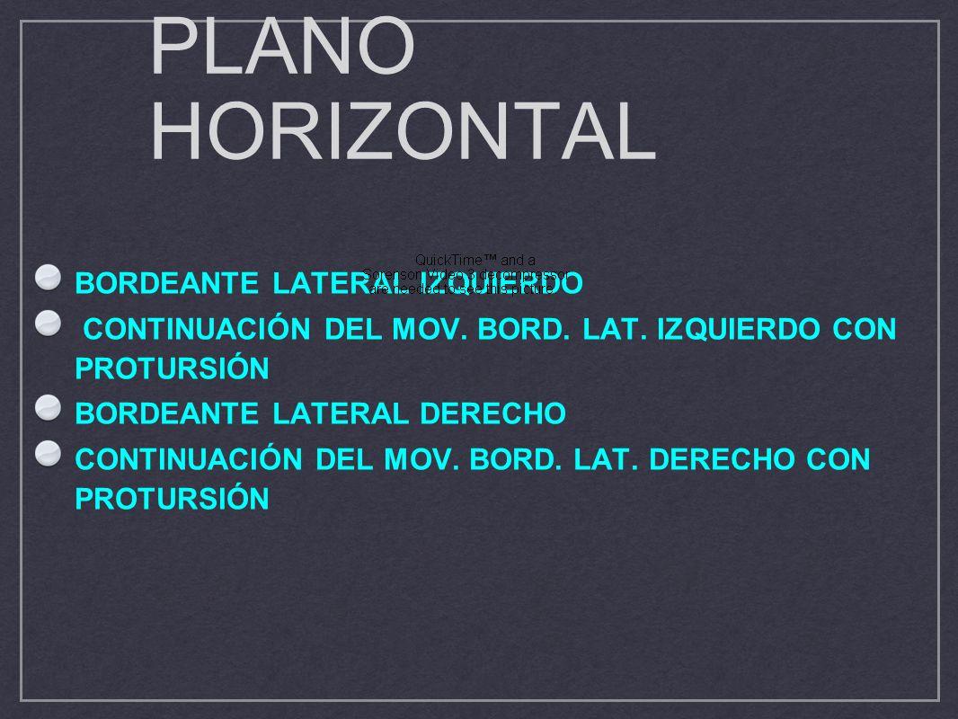 PLANO HORIZONTAL BORDEANTE LATERAL IZQUIERDO