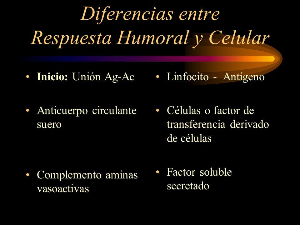 Diferencias entre Respuesta Humoral y Celular