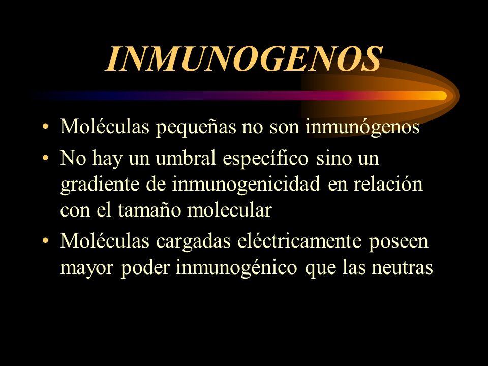 INMUNOGENOS Moléculas pequeñas no son inmunógenos