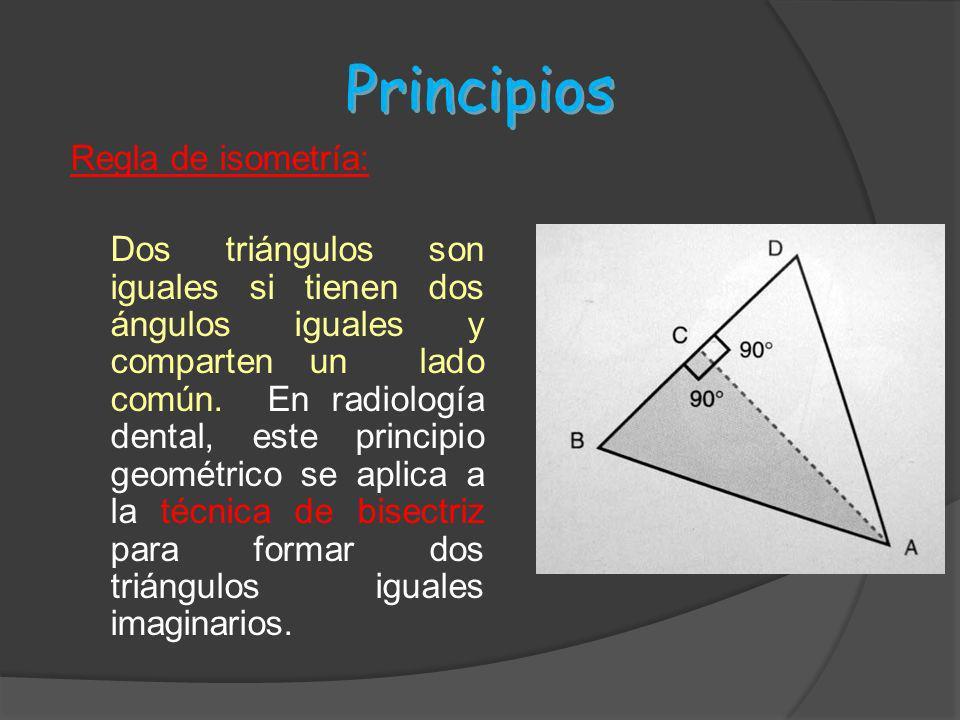 Principios Regla de isometría: