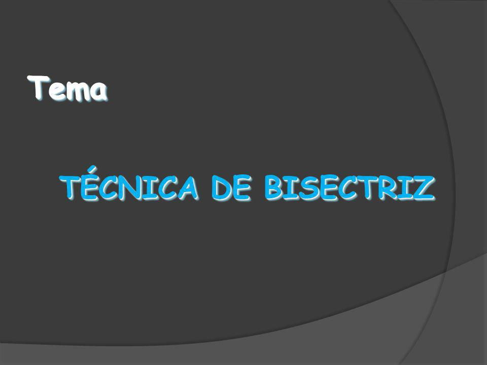 Tema TÉCNICA DE BISECTRIZ