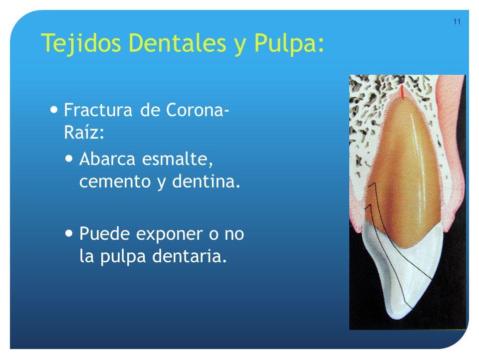 Tejidos Dentales y Pulpa: