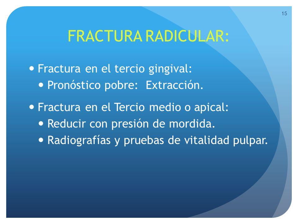 FRACTURA RADICULAR: Fractura en el tercio gingival: