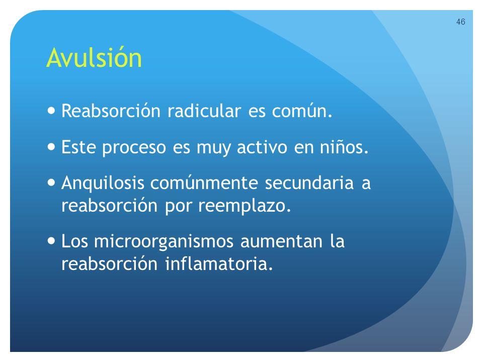 Avulsión Reabsorción radicular es común.