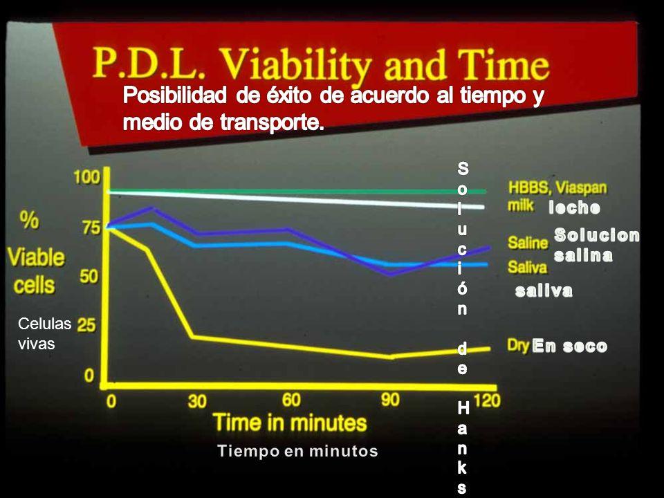 Posibilidad de éxito de acuerdo al tiempo y medio de transporte.
