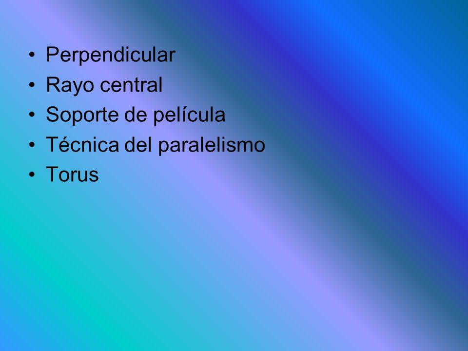 Perpendicular Rayo central Soporte de película Técnica del paralelismo Torus