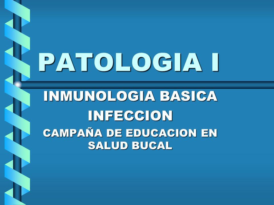 INMUNOLOGIA BASICA INFECCION CAMPAÑA DE EDUCACION EN SALUD BUCAL