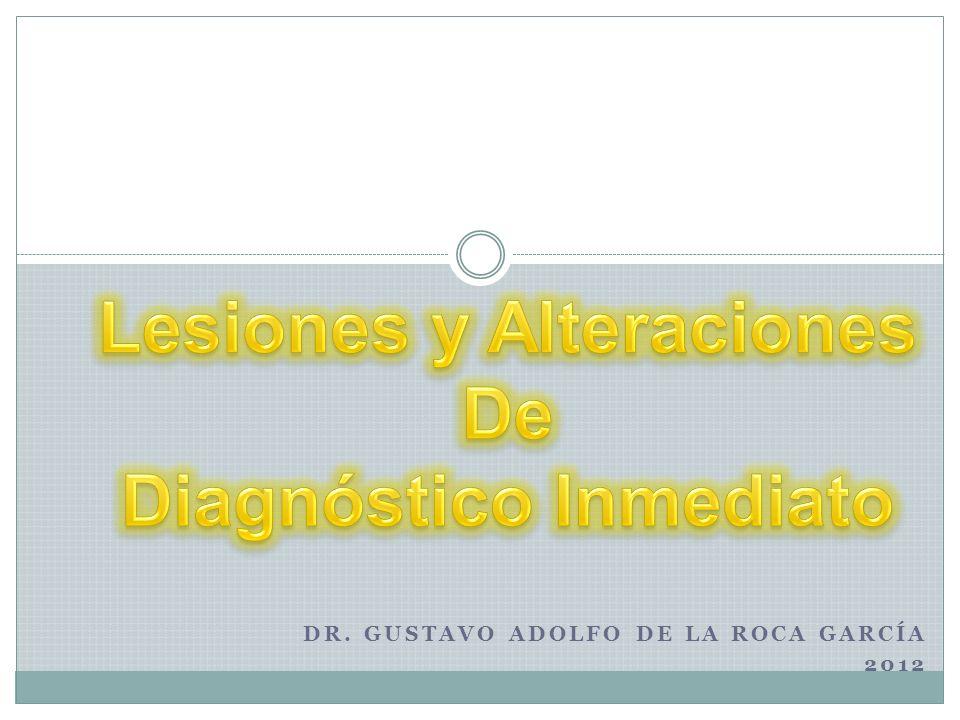Dr. Gustavo Adolfo De la Roca García 2012