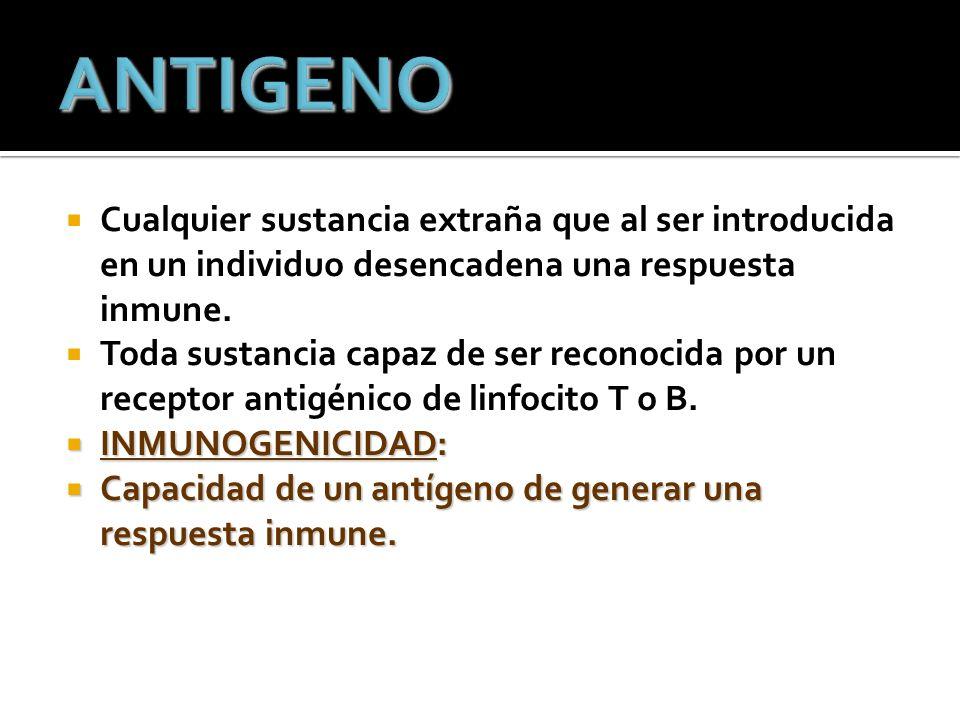 ANTIGENO Cualquier sustancia extraña que al ser introducida en un individuo desencadena una respuesta inmune.