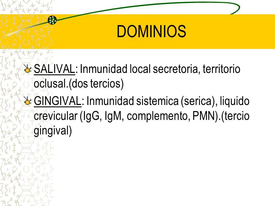 DOMINIOS SALIVAL: Inmunidad local secretoria, territorio oclusal.(dos tercios)