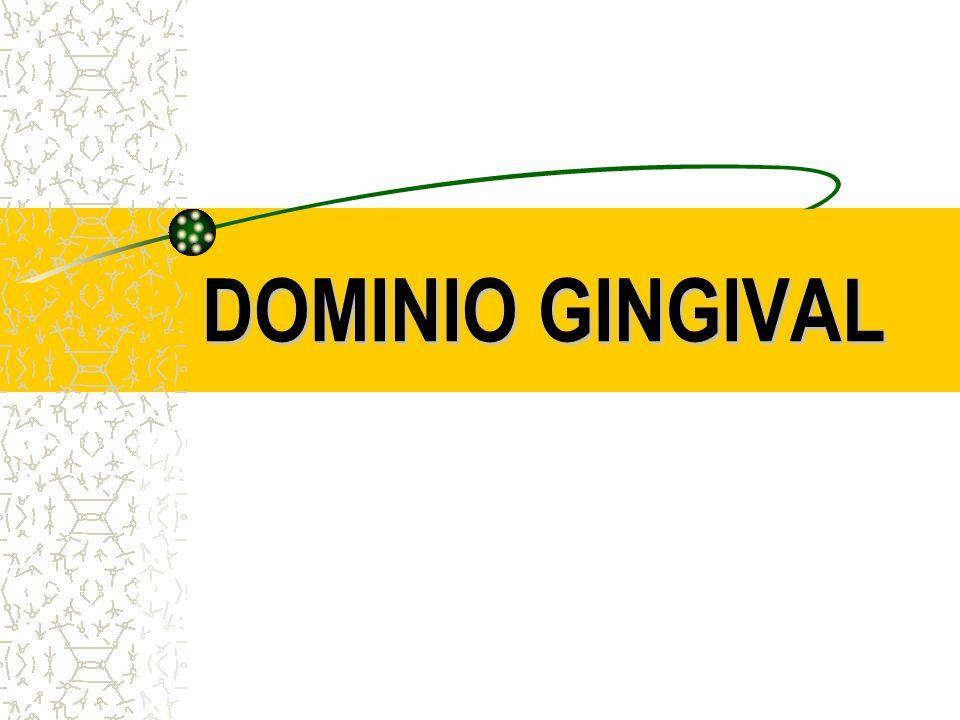 DOMINIO GINGIVAL