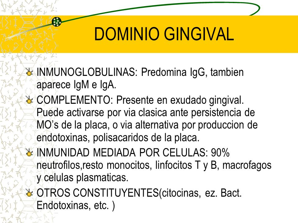 DOMINIO GINGIVAL INMUNOGLOBULINAS: Predomina IgG, tambien aparece IgM e IgA.