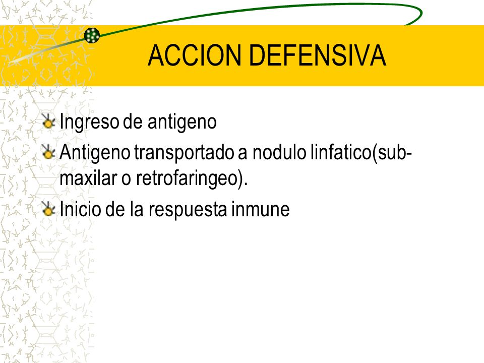 ACCION DEFENSIVA Ingreso de antigeno