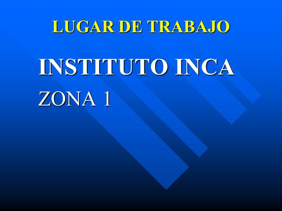 LUGAR DE TRABAJO INSTITUTO INCA ZONA 1