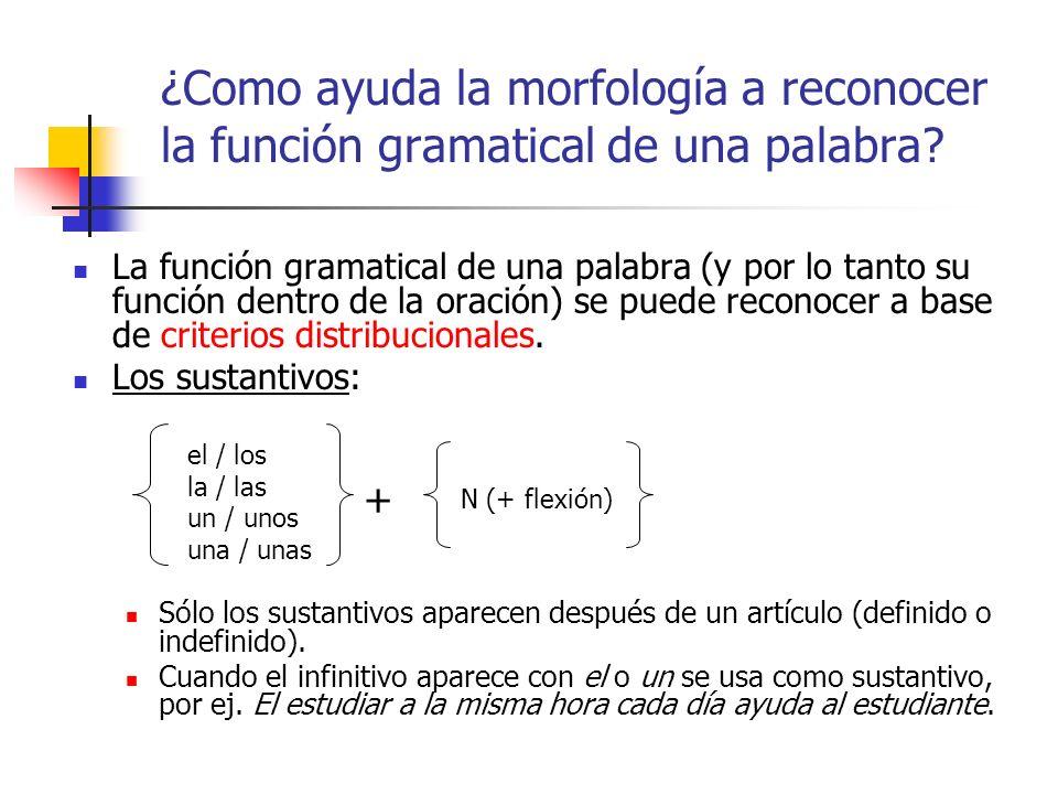¿Como ayuda la morfología a reconocer la función gramatical de una palabra
