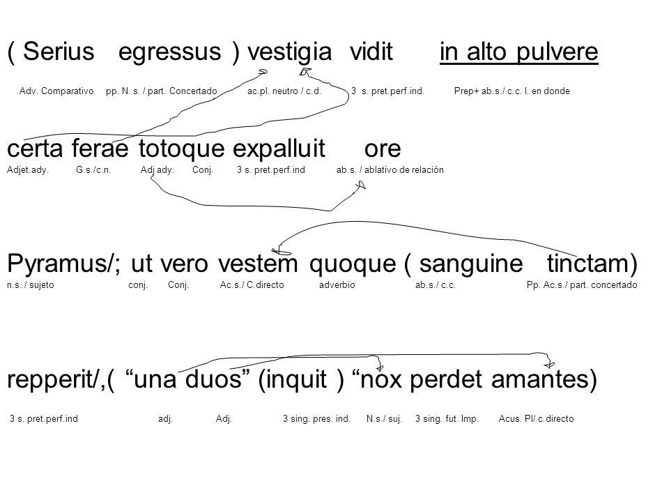 ( Serius egressus ) vestigia vidit in alto pulvere
