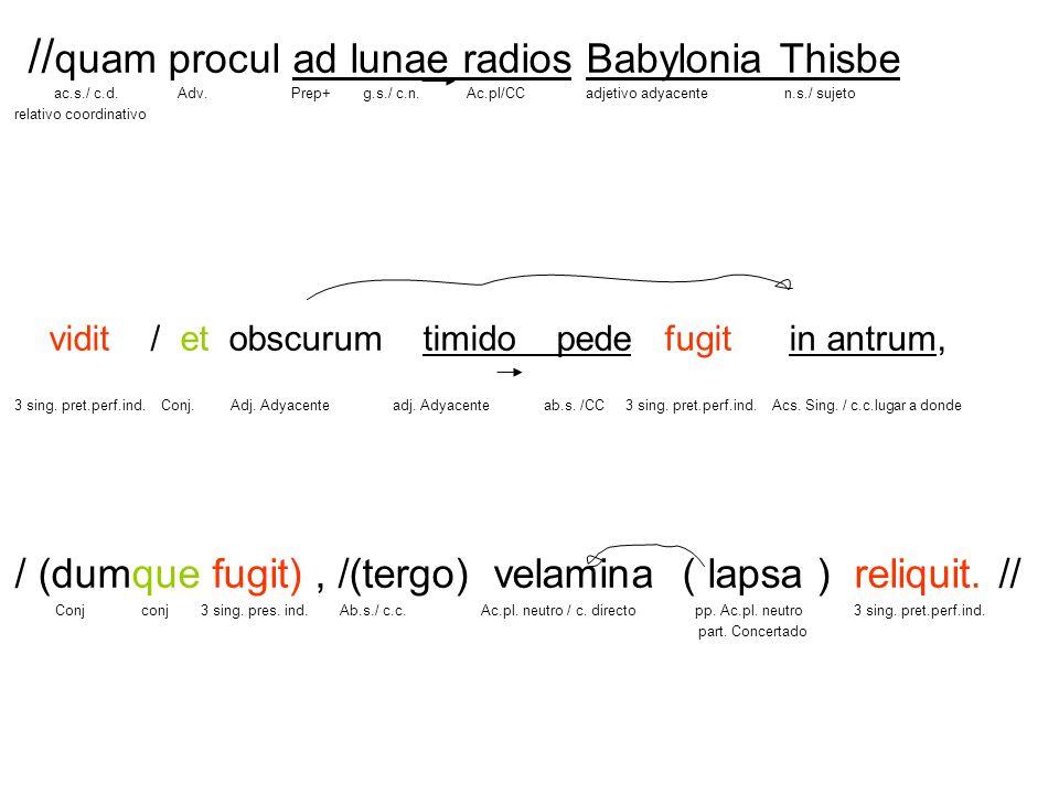 //quam procul ad lunae radios Babylonia Thisbe ac. s. / c. d. Adv