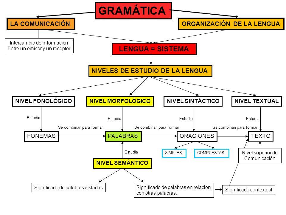 GRAMÁTICA LENGUA = SISTEMA LA COMUNICACIÓN ORGANIZACIÓN DE LA LENGUA