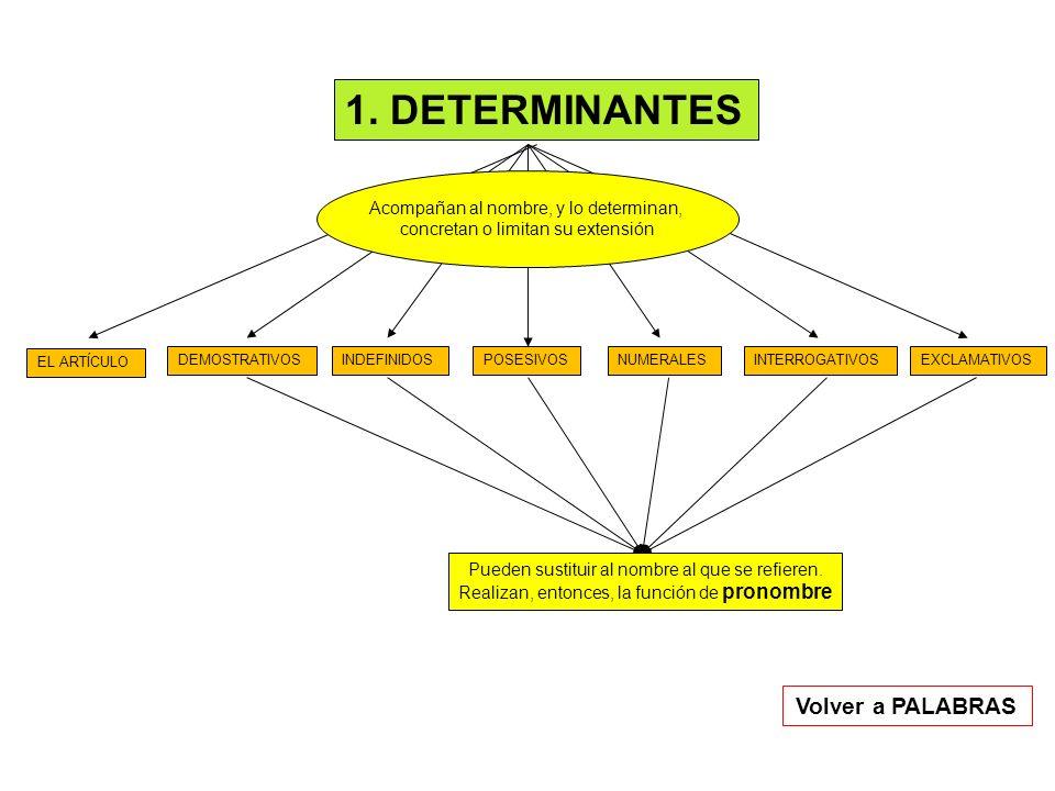1. DETERMINANTES Volver a PALABRAS