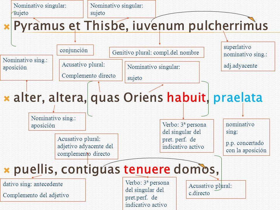 Pyramus et Thisbe, iuvenum pulcherrimus