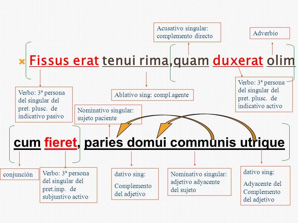 Fissus erat tenui rima,quam duxerat olim